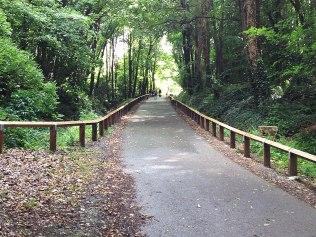 Pathway, Fingal